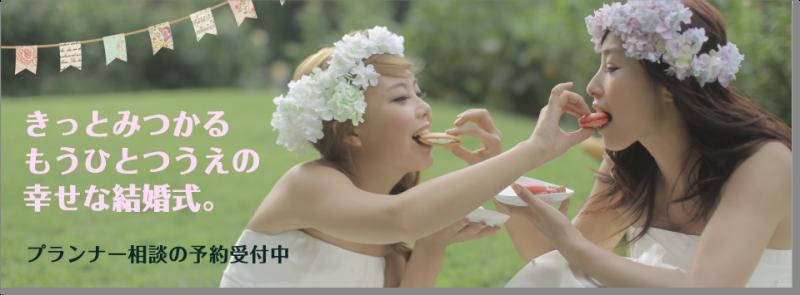 novia novia wedding